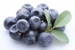Польза черники при диабетической стопе