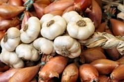 Лук и чеснок для лечения грибка стопы